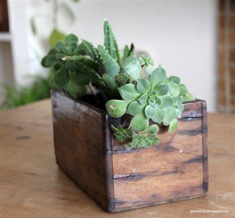 Adore Home Decor by Reclaimed Wooden Planter For Succulents Diy Akamatra