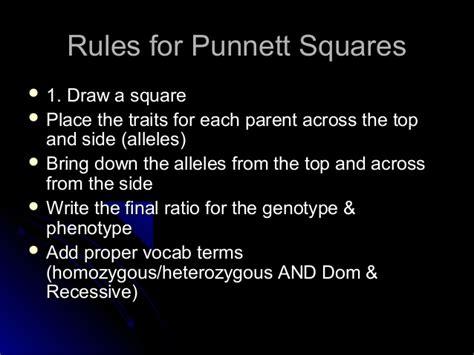 Mendel punett squares2traitcrosses F1 Generation Punnett Square