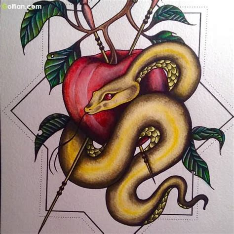snake and apple tattoo designs snake apple segerios segerios