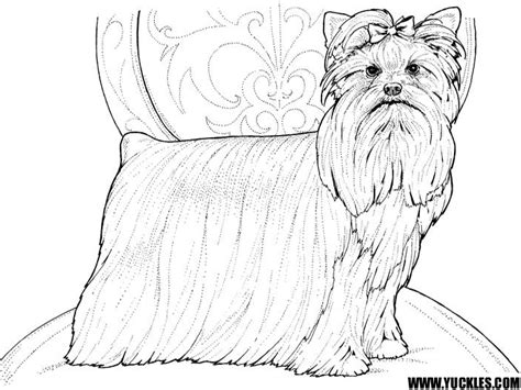 yorkie coloring pages teacup yorkie coloring pages coloring pages