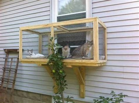 cat patio best ideas about catio windows window catio and cat
