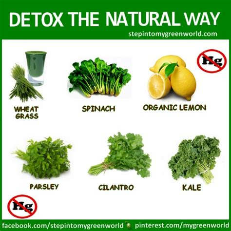 What Is Detox Like by Detox Prettify Yourself