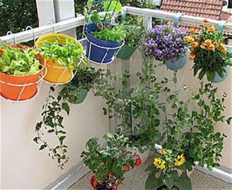 balcony container garden balcony garden pots www pixshark images galleries