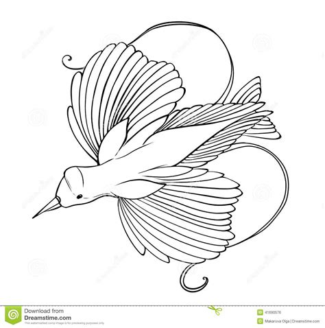 coloring pages bird of paradise bird of paradise coloring page stock illustration
