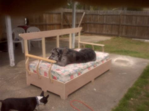 bed for great dane my son s great dane s bed that he built twin size bed