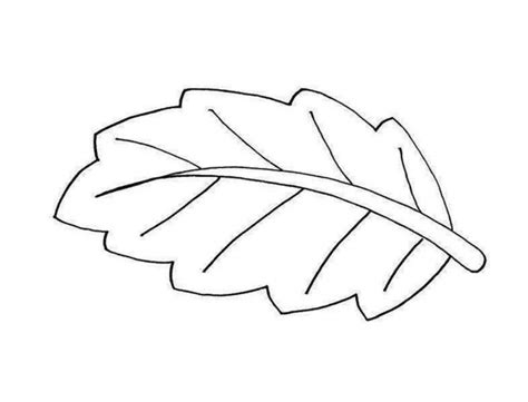 black and white clipart black and white pictures of leaves cliparts co