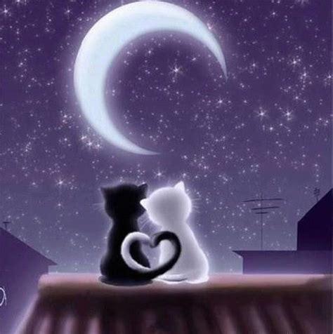 imagenes good night my love romantic good night sms forwarders