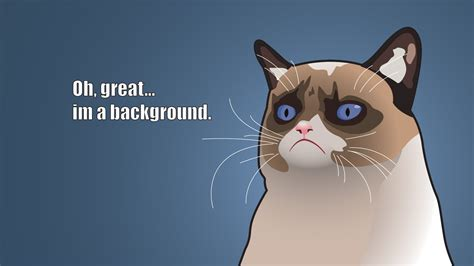 cat jokes wallpaper www intrawallpaper com cartoons page 2