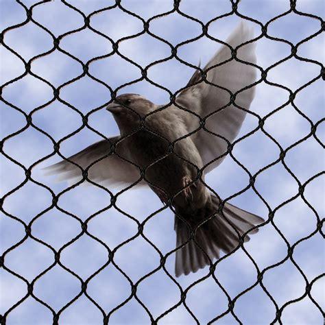 Bird Net 301 moved permanently