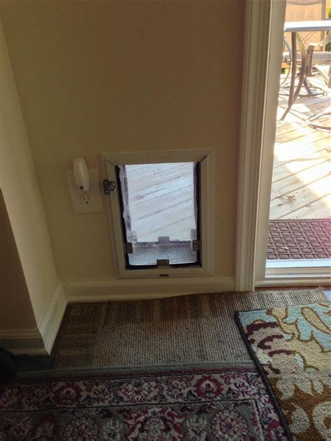 exterior pet door built in exterior door with built in pet door exterior door with