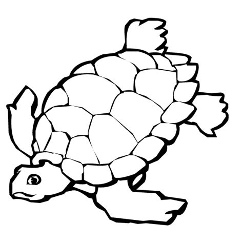 desert turtle coloring page coloring page desert tortoise coloring pages for free