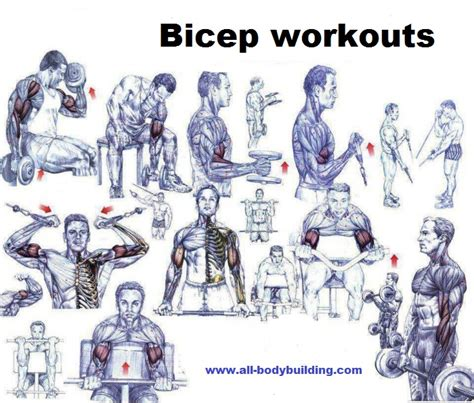 top 10 bicep workout and bicep exercise mistakes all