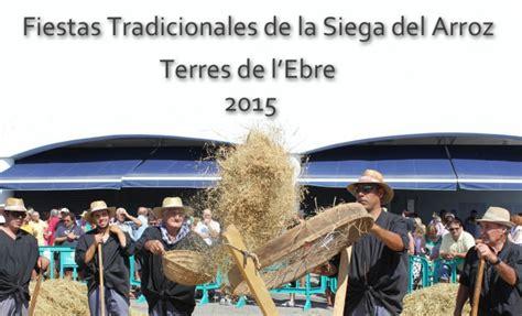 fiesta de la siega fiestas tradicionales de la siega del arroz de terres de l