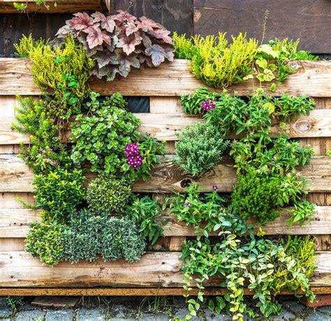 Vertikal Garten Pflanzen by Vertikaler Garten Aus Palette 187 Anleitung In 5 Schritten