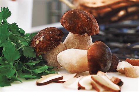 funghi porcini congelati come cucinarli funghi porcini interi prima scelta asiago food