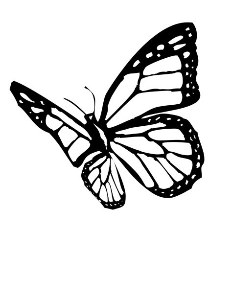 monarch butterfly coloring pages free monarch butterfly clip art cliparts co
