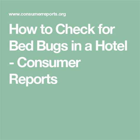 how to test for bed bugs 25 best ideas about bed bug report on pinterest bed