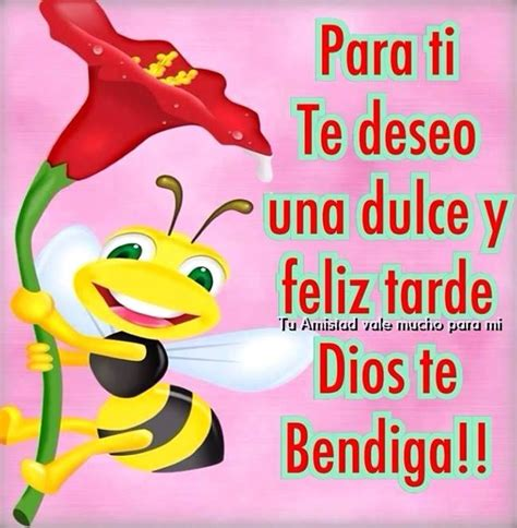 imagenes de hola dios te bendiga 190 best bonita tarde images on pinterest good morning