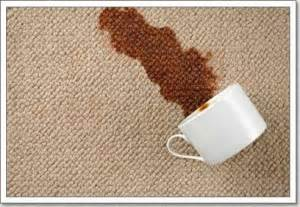 removing tea coffee stains from carpet verydirtycarpet