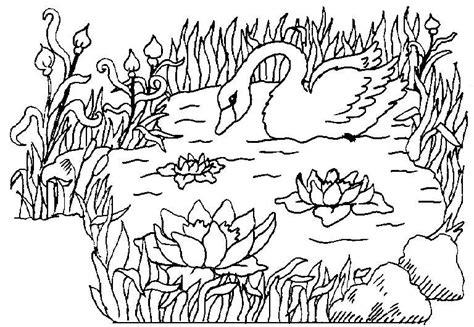 cigni disegni per bambini da colorare