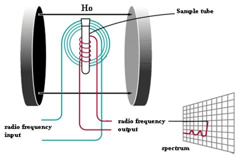 how does proton nmr work organic spectroscopy international nuclear magnetic