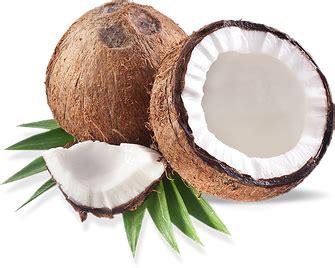 coco nut film coconut oil popcorn recipe the coconut mama