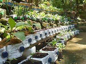 Vertical Garden Philippines Vertical Gardening Container Gardening