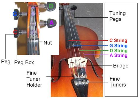 What Do You Need For String - how to string a viola get tuned