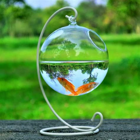 cute clear  shape hanging glass aquarium fish bowl
