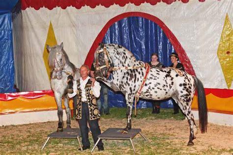 kaiser bräu rott am inn rott am inn circus boldini im kaisergarten