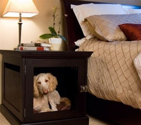 Dogs Sleeping In Bedroom by Inspiring Friendly Home Improvements Part 1 Live