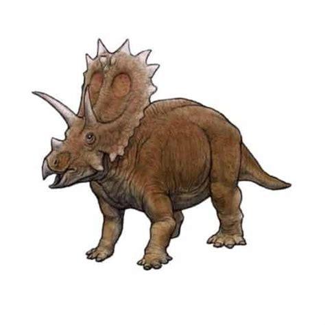 imagenes de la familia dinosaurio el anchiceratops un dinosaurio con una corona de cuernos
