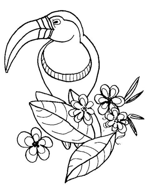 Wild Bird Zoo Animals Coloring Pages Coloring Pages Of Animals In The Zoo Coloring Animals For