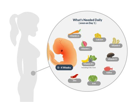 vitamin c supplements during pregnancy how prenatal vitamins increase your chances of pregnancy