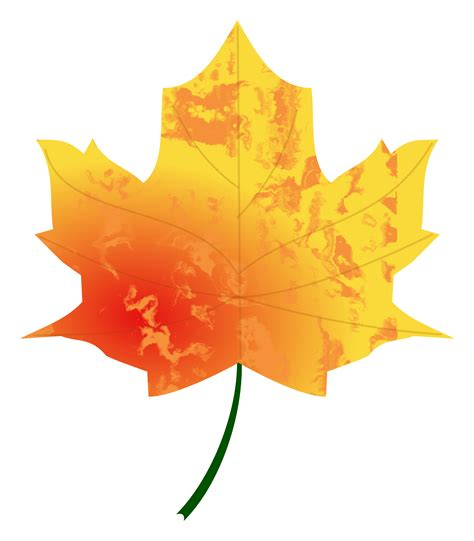 Autumn Leaf clipart autumn leaf 4