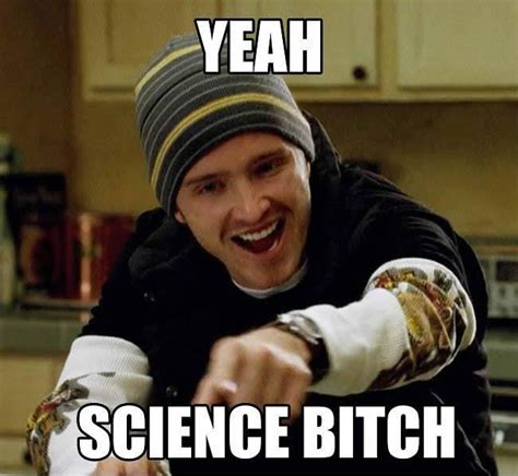 Science Bitch Meme - why is this las vegas seo company talking about memes