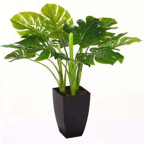 Pot Pour Plante Verte by Plante Verte Artificielle 77 Cm Avec Pot Achat