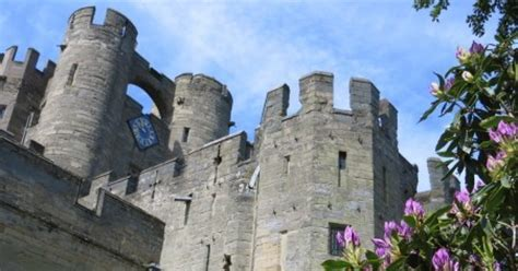 printable vouchers warwick castle more summer deals special offers promo codes freebies