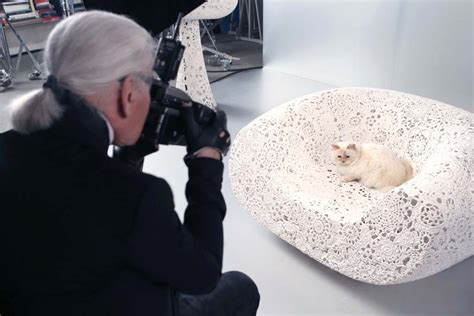 Karl Lagerfelds Own Brand Is Set To Expand by Karl Lagerfeld S Cat Choupette To In Makeup