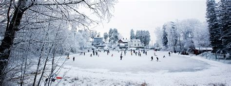 Backyard Ice Rink Plans Outdoor Hockey Rink Boards For Sale 187 Backyard And Yard