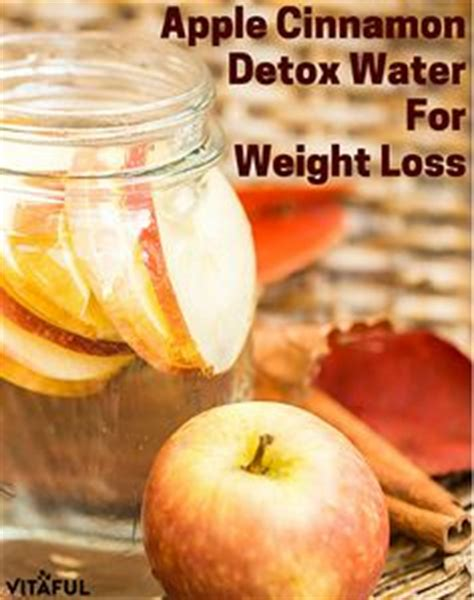 Apple Cinnamon Detox Water Dr Oz by 1000 Images About Weight Loss Tips On Weight