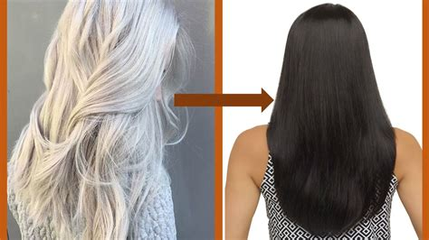 how to bring out grey hair change white hair to black hair naturally सफ द ब ल क
