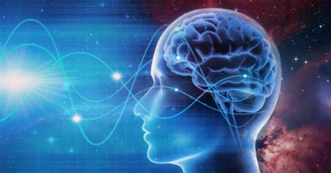 how your brainwaves shape your reality