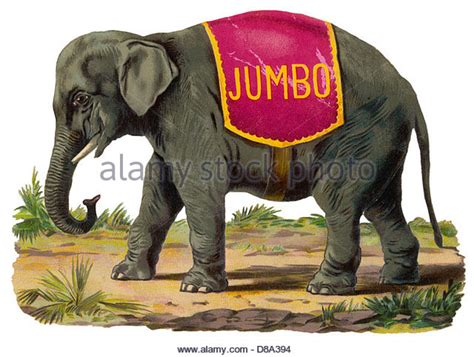 Elephant Jumbo jumbo the elephant stock photos jumbo the elephant stock