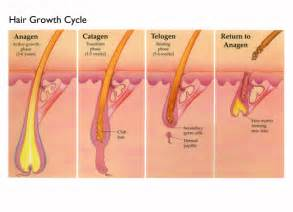 best days to cut hair for growth everything about laser hair removal at home jane s