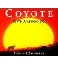 coyote s defending america books coyote by stephen r swinburne scholastic