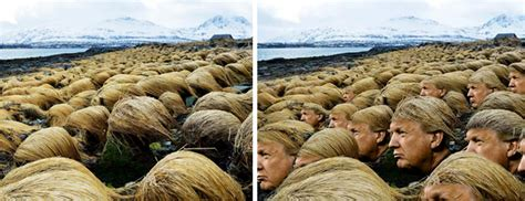 trump island secret photos reveal where donald trump grows his hair