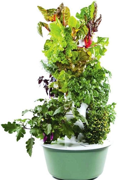 How To Start An Indoor Herb Garden From Seeds - tower garden system 171 grayce egami natural skin care