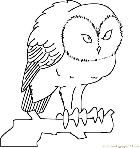 great horned owl coloring pages coloring home