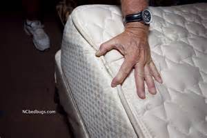 what to look for in a mattress bed bugs are they in your room siowfa14 science in our world certainty and cont